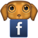 Facebook-puppy-resized-image-75x75